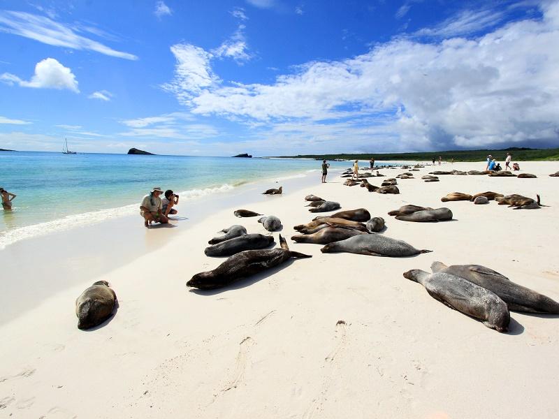 Tour a Galapagos magico