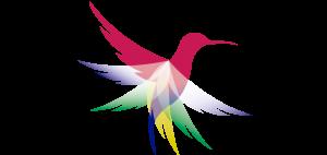 Intouring – Agencia de Viajes en Ecuador