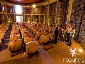Tour a Santiago  y sus vinos